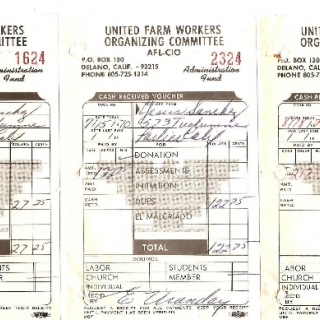 Membership Receipts Issued to UFWOC Organizer Jesus Sanchez / By Esther Uranday / August 1970