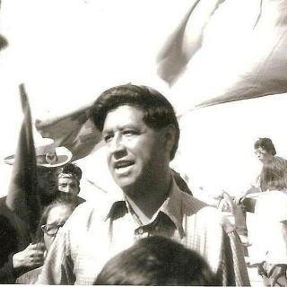 Cesar Chavez on Coachella Valley picket lines. / 1970