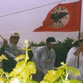 Delano to Sacramento March, Parlier member takes lead, Parlier to Sanger / 1994