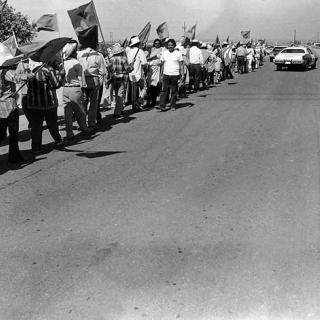 Coachella Strike UFW picket line 1973