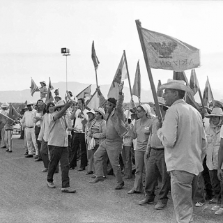 Coachella Strike UFW picket line 1973.