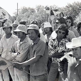Filipino Strikers Coachella Strike UFW picket line 1973.