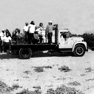 Teamster goons roaming on dump truck during Coachella strike 1973.