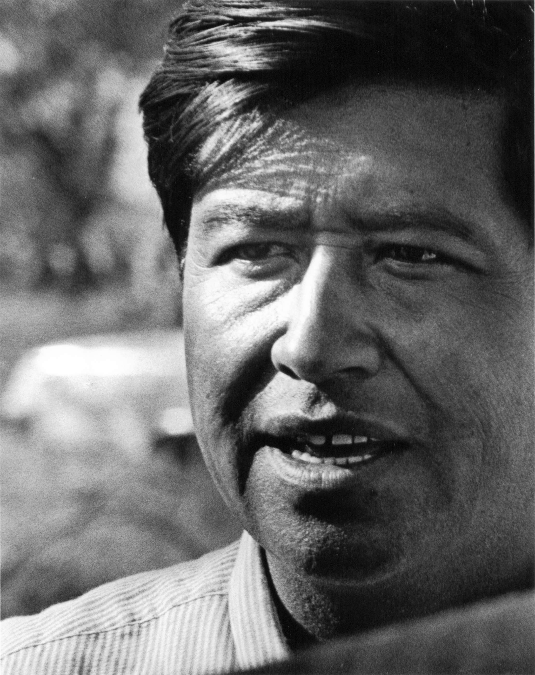 as deceivers yet true rdquo essay book review acirc farmworker movement cesar chavez